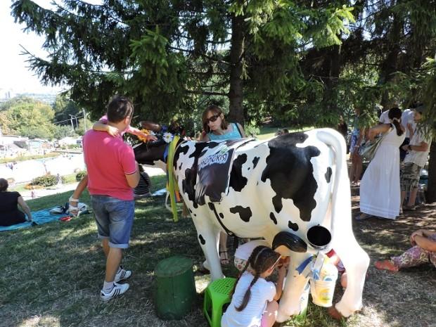 день молока Співоче поле