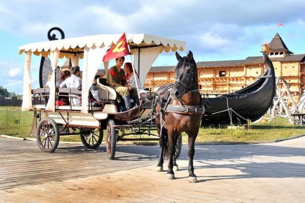 выставка лошадей