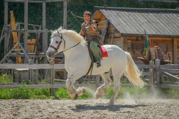 Выставка лошадей в Парк Киевская Русь