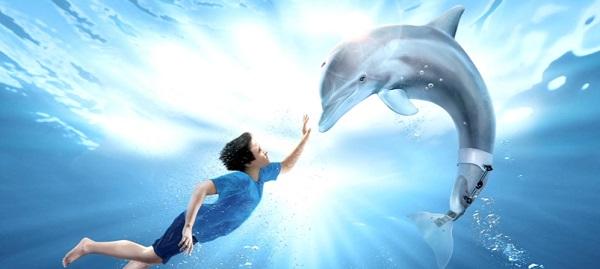 История дельфина. Фильмы для детей