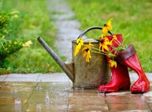 что делать дома в дождь