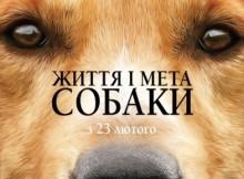 жизнь и цель собак