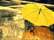 дождь зимой