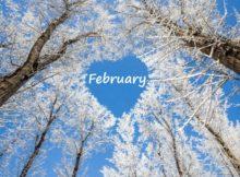 что сделать в феврале