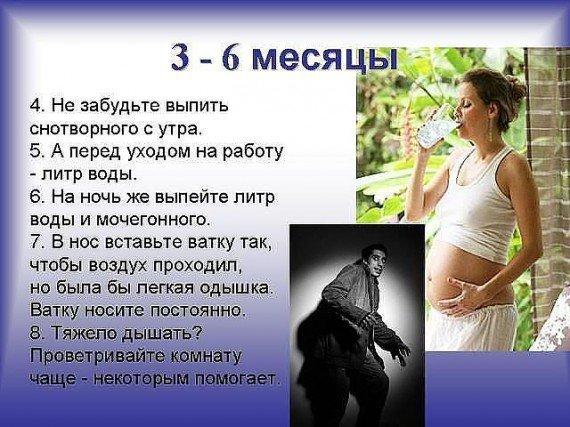 беременная жена