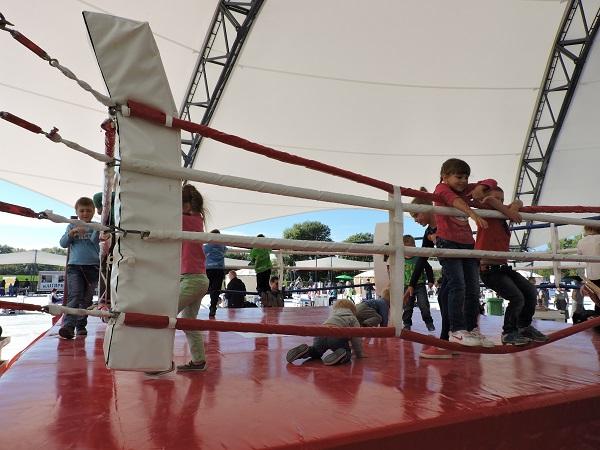 Fun Family Fest Sky family park