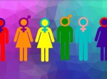 гендерні особливості