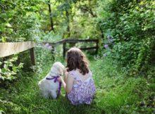 діти та тварини